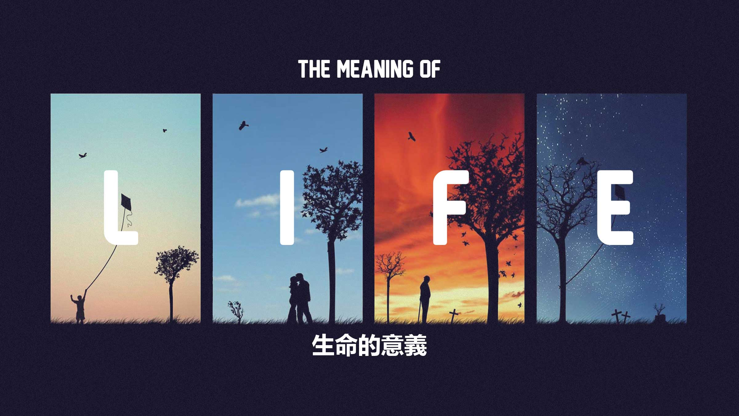 The-Meaning-of-Life---Title